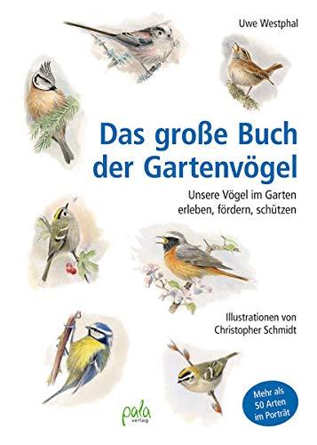 Gartenvögel bei Vogelfutter Test